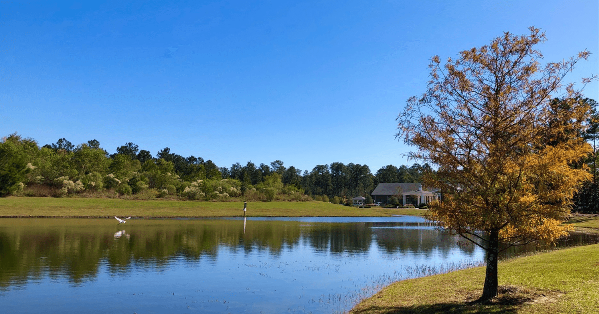 Christwood pond with egret in flight